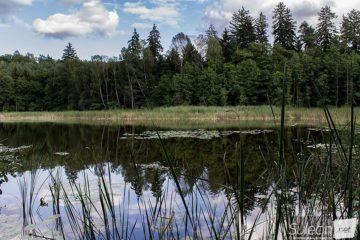 Jezioro drugie Sulęcin