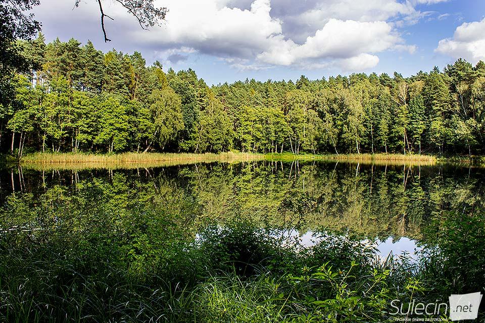Jezioro pierwsze Sulęcin