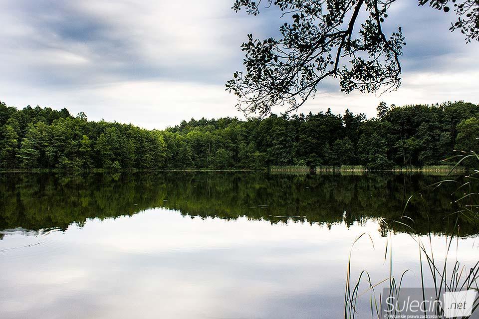 Jezioro Lubniewsko