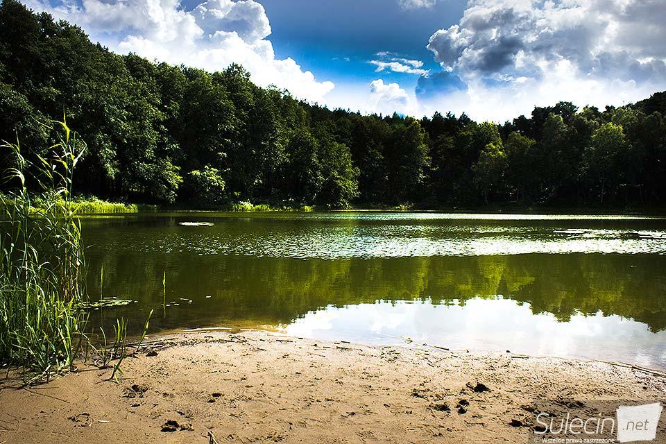 Jezioro trzecie Owiecko Sulęcin