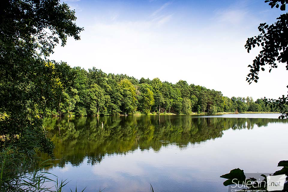 Jezioro Wędrzyn Sulęcin
